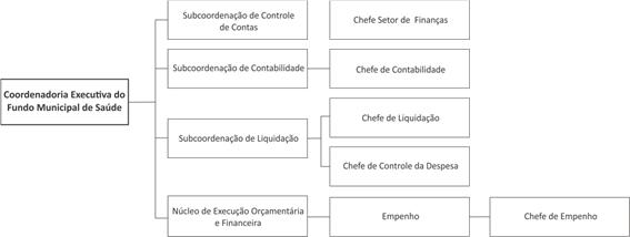 fms-organograma