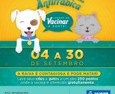 15 mil animais já foram imunizados na Campanha Antirrábica