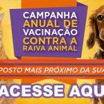Saúde prorroga campanha de vacinação antirrábica em Salvador