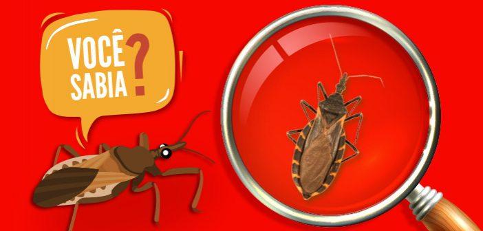 Veja aqui a lista de unidades que recebem os insetos para análise